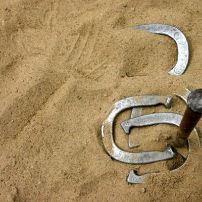 Horseshoes around stake in sand